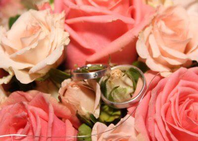 Ringkissen Rosa Rosen